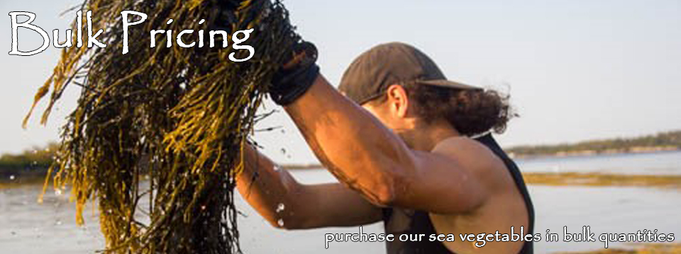 VitaminSea Seaweed Bulk Pricing: Bulk pricing for our Maine Sea Vegetables
