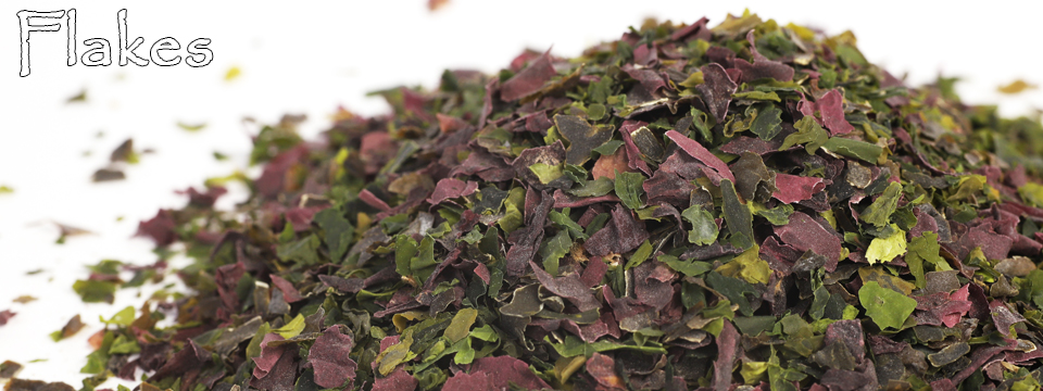 Edible Seaweed: Flakes
