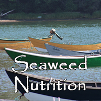 Seaweed Nutrition Facts