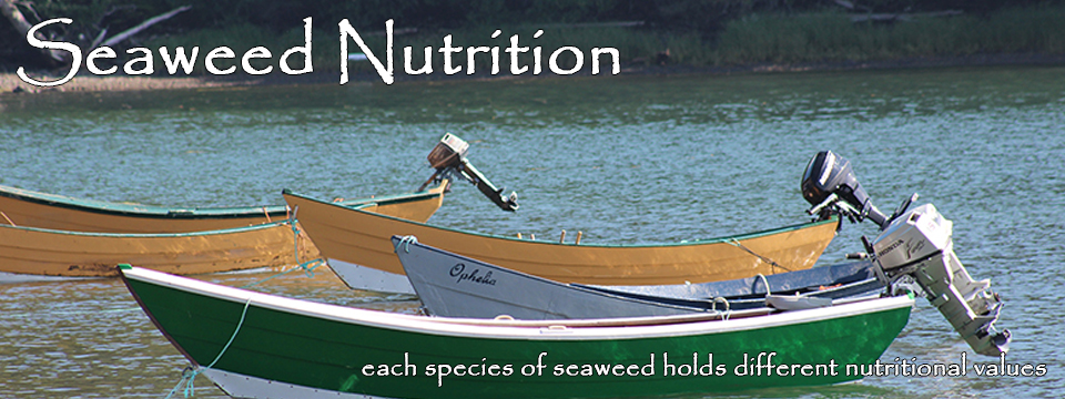 Seaweed Nutrition Facts: each species of seaweed holds different nutritional values